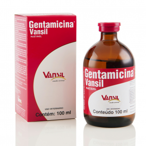 Gentamicina 100 ml Injetável copiar